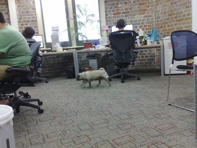 アーロンチェアがある部屋・オフィスの雰囲気画像まとめ1001